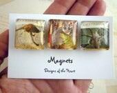 Australian Stamp Collection - Square Glass Magnet set - Kangaroo, Koala and Possum. Australian Animals. Recycled stamps