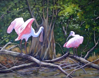 Bird Art, Everglades Spoonbills, Giclee Print on Stretched Canvas from Original Oil Painting