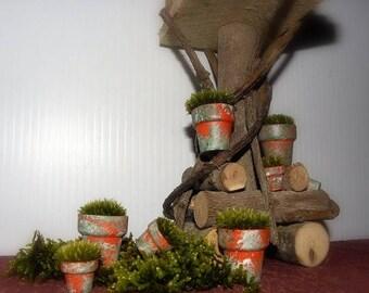 Save25% 2-1 inch Mossy Terra Cotta Pillow Moss pots-Miniature Terrarium-Shade garden Moss Pot