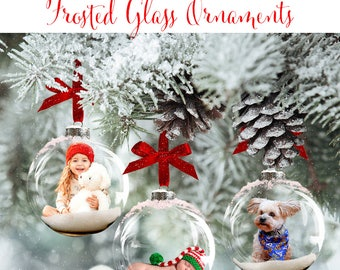 Christmas Digital Background, Photo Overlays, Background Replacement, Photography Backgrounds & Backdrops, Frosted Glass Ornaments.
