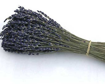 200 Stems Dried Lavender /  French Lavender  /  Wedding Decor / Favor Supply /