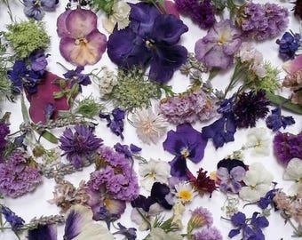 Dry Flower Confetti, Aisle Decoration, Real Dry Flowers, Biodegradable, Flower Petal, Wedding Decor, Wildflowers, 25 Favors
