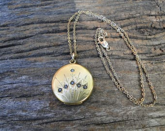 Beautiful Victorian RBM Atrice Locket with Reeds and Paste Stones