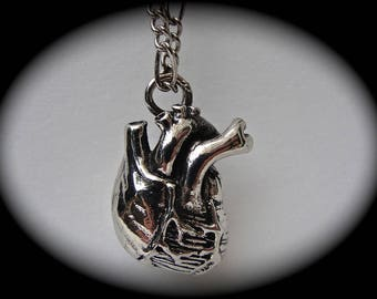 11 Anatomical Heart Necklace in solid white bronze  Made in NYC
