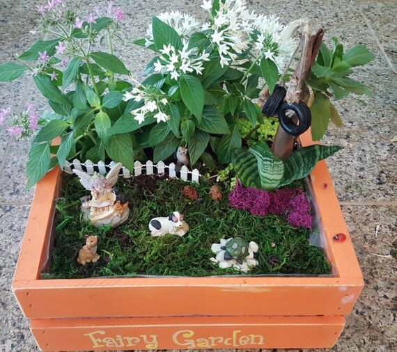 Fairy Jamie and Friends Garden Kit - (Plants and Soil not included)