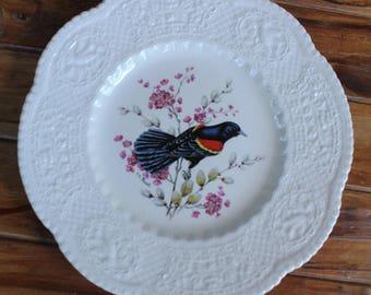 Royal Cauldon English Ceramic Redwinged Blackbird Plate