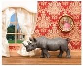 Rhino animal diorama art print - Better Homes and Rhinos