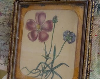 Beautiful Ornate Antique Daguerreotype Case with Botanical Floral Print
