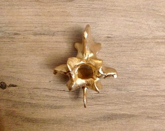 Real Animal Bone Art - Hand Painted - Single Vertebrae Back Bone Gold