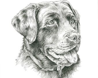 Custom made PET PORTRAIT A3