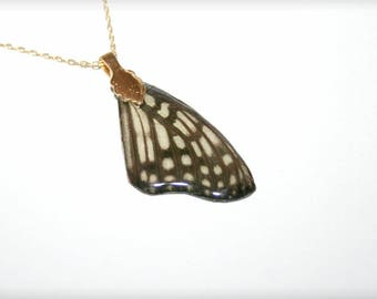 Real Butterfly wing, gold plated pendant and chain (30)