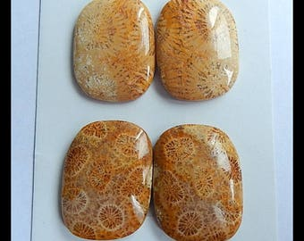 New,2 Pairs Indonesian Fossil Coral Cabochons,24x18x5/25x19x5mm,15.61g
