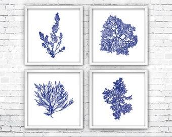 Coral Print Set, Marine Life, Square Coral Print, Minimalist Art, Navy Blue, Sea Fan Art Prints, Coral Art Prints, Beach Decor, Nautical Art