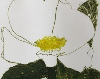 Etching print 'White Rose' original, hand pulled etching and aquatint by Marta Wakula-Mac, wild rose, garden, botanical print, flower