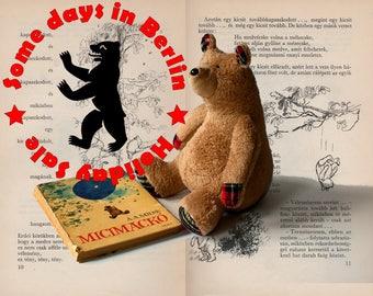 Sale! Honey Bear, Soft Brown Plush Bear, Teddy Bear, Cuddly Plush