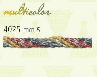 """Cord Twisted Trim Multicolor 2 yards 1/4"""" width"""