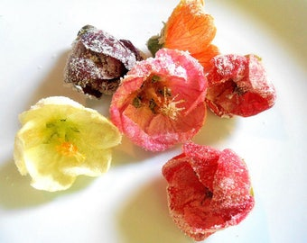 100 + Organic, MIXED HIBISCUS BLOSSOMS, Edible  Flowers, Salads, Garnishes Hors d'oeuvre Toppers Free Shipping Overnight