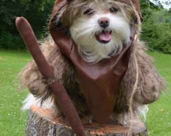 Adorable varigated Brown Woodland Dog Halloween Costume with hood