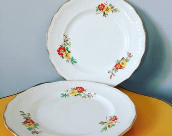 Pair of Floral Vintage Plates