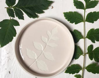 Leaf dish, a cute little porcelain dish with a leaf impressed onto the surface