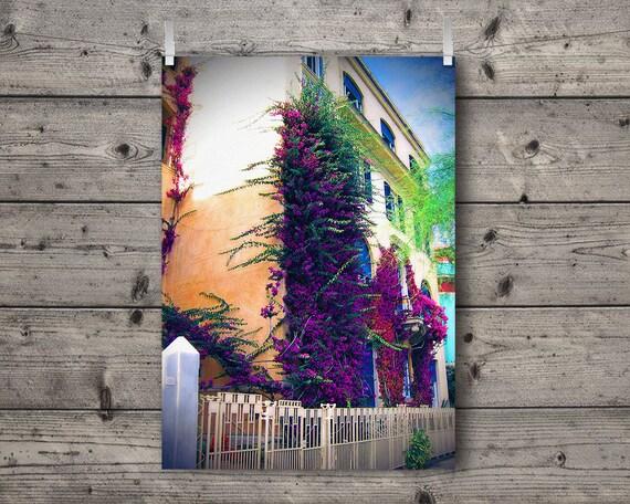 The Bougainvillea / Monterosso, Cinque Terre, Liguria, Italy / Mediterranean Italian Riviera Travel Photography Print / Colorful Wall Art