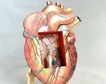 I Have a Heart of Stone, Assemblage, Heart Diorama, Heart Shrine, Shadow Box
