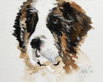 St.Berndard Dog Fine Art Print #455