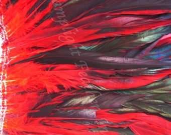 Rooster Feathers Half Bronze Coque Tail Feathers per strung foot