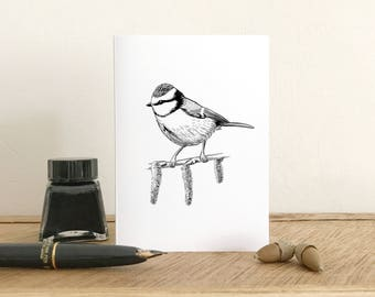 Blue tit greeting card - Blank Card - Fine Art Giclee Card - Birthday card - Thank you card - Small note card
