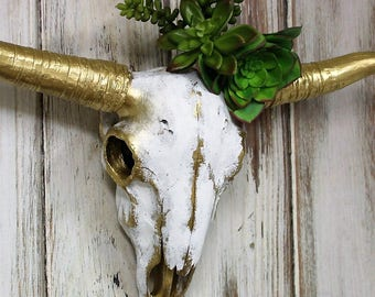 Cow Skull-Longhorn Cow Skull Feathered Painted with Succulents-Gold Wall Decor-Home Decor-Ranchers-Gift