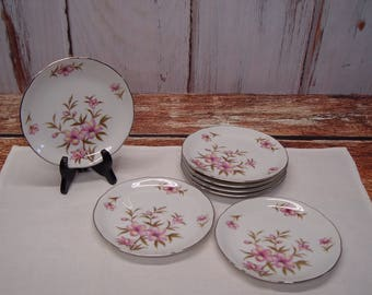 Bellaire China Allegro Pattern Bread and Butter Plates, Small Plates, Set of 7, Platinum Edge