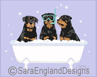 Spa Day - Rottweiler
