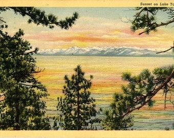 Sunset on Lake Tahoe Through the Pines California Vintage Postcard 1941
