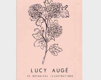 Pink Hydrangea Exhibition Poster