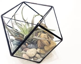 Geometric Terrarium - Large Cuboctahedron / Stained Glass Terrarium