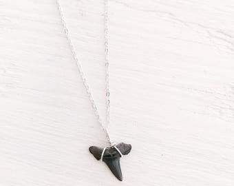 Sterling Silver Fossil Shark Tooth Necklace