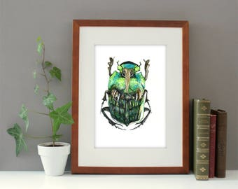Beetle original watercolor painting of size 9,4'x12,6' inches, animal watercolor