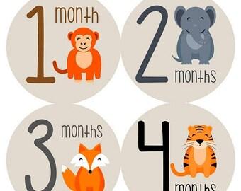 Monthly Baby Sticker Baby Boy | Baby Girl | Baby Month Stickers | Baby Milestone Sticker | 12 Month Stickers | Photo Prop | Animals 1163