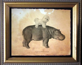 Bichon Frise Dog Riding Hippo - Vintage Collage Art Print on Tea Stained Paper - dog art - dog gifts - dog christmas gift