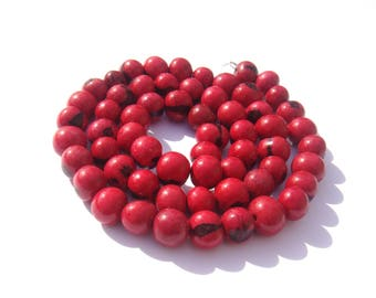 20 beads of Acai Brazil tinted red seeds pale 6/8 mm in diameter