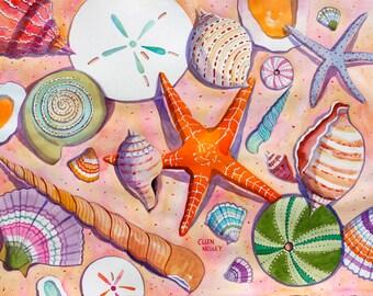 Seashell Painting, Seashell Print, Shell Watercolor, Sand Dollar, Starfish, Beach Print, Seashell Print, Negley 11 x 14, 16 x 20 or 20 x 24