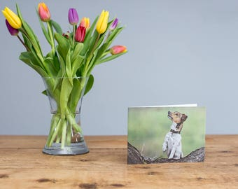 Pepper - Jack Russell Terrier Greetings Card