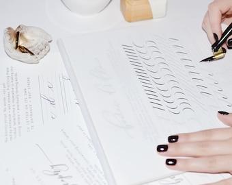 Basic Strokes Letterform Practice Bundle Modern Calligraphy Alphabet Set PRINTABLE INSTANT DOWNLOAD Worksheet Guide for Beginners