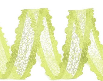 Green Ribbon lace effect 25 mm