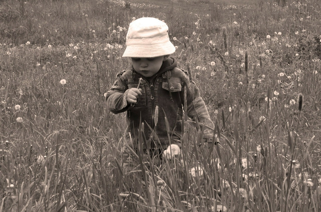 child, Field of grass, sensory, smell, sight, outdoor, learning