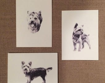 Set of 6 or 12 Handmade Blank Yorkshire Terrier Yorkie Print Note Cards #1