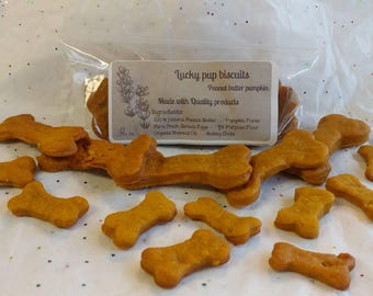 Peanut Butter Pumpkin - Gourmet dog treats - lucky dog biscuits