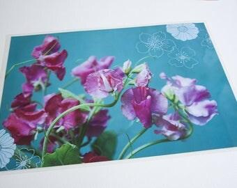 set de table plastifié pois de senteur roses et graphismes de fleurs, fond bleu