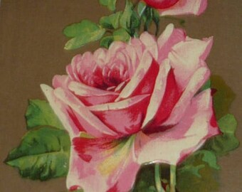 ON SALE till 7/28 Pink Roses Antique Greeting Postcard