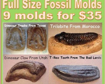9 big museum fossil molds -  Make full size fossil replicas for pennies each. Perfect for chocolate, plaster, soap, jello, sandbox play